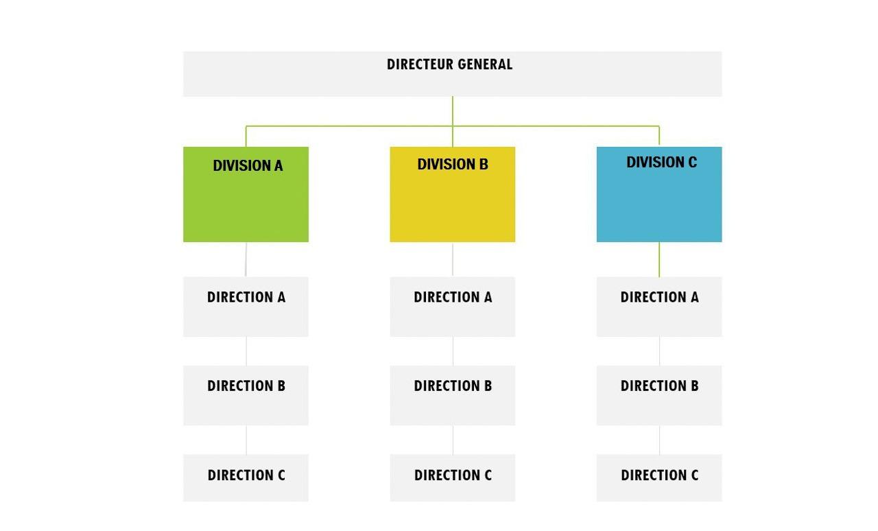 Modèle d'organigramme divisionnel.