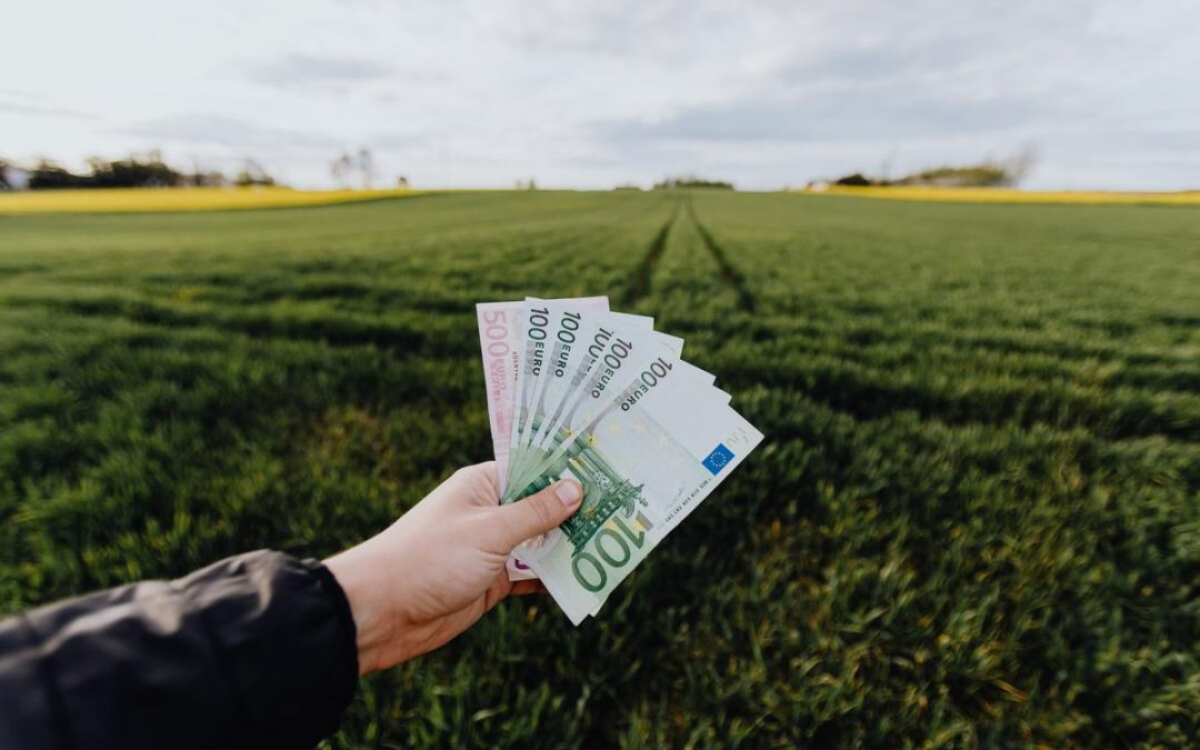 Investir vert : les bons plans